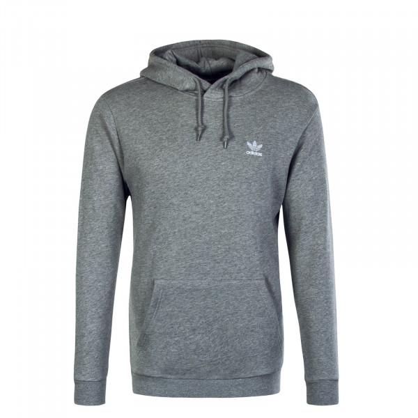 Herren Hoody Essential Grey