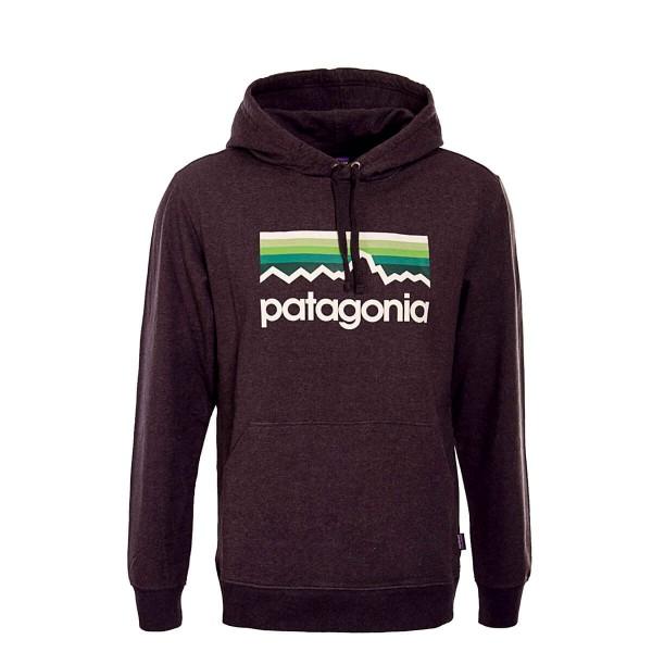 Patagonia Hoody Line Logo Antra Beige